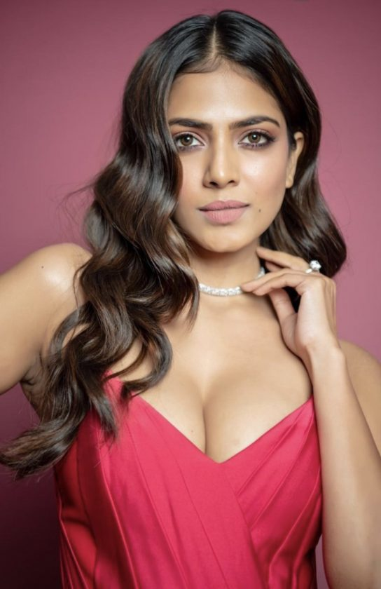 Malavika Mohanan All Films Hit Flop Box Office Verdict