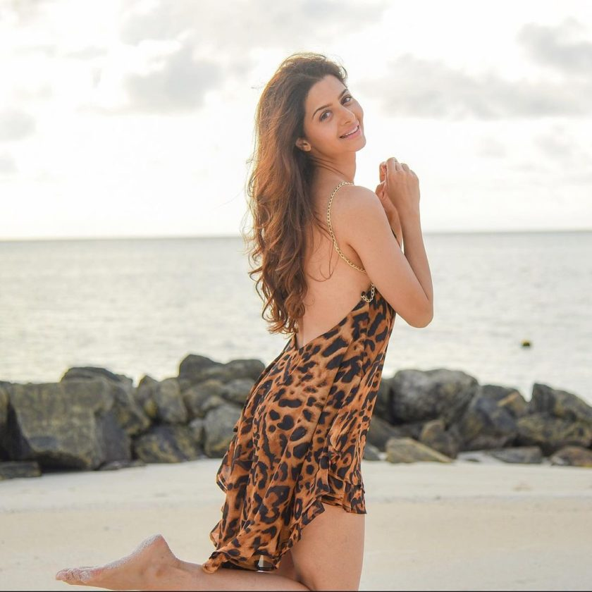 Vedhika 8 Hot Cute Gorgeous Pictures